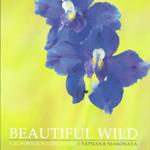 Beautiful Wild: California Wildflowers