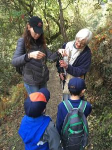 Tiger Scouts investigate lace lichen.