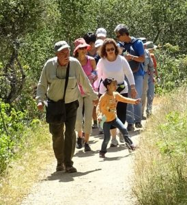Docent-led hike in Edgewood Park